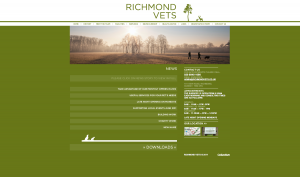 Richmond Vets web site build