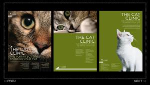 Richmond Vets Cat Campaign
